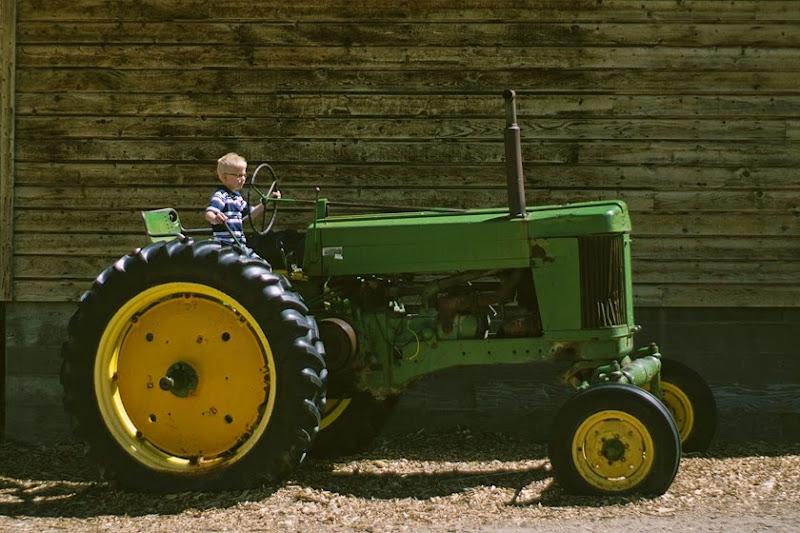 wheelerfarm13