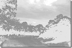 Picasa's Pencil Sketch filter