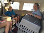 PnP Rescue - Darla the Blind Beagle - April 2015 - 01
