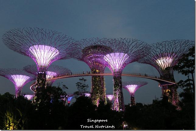 新加坡超級樹燈光秀 (15)