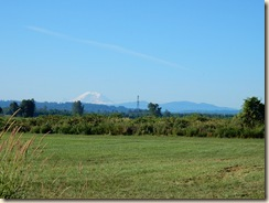 Mt. Ranier in summer