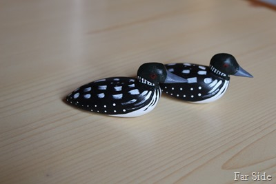 Pair of Loons complete