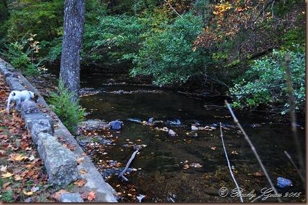10-29-15 Hot Springs AR 51