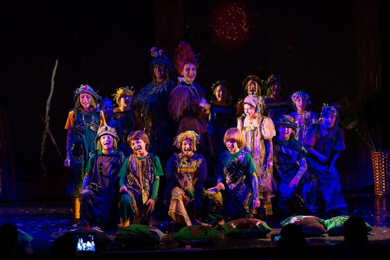 Мюзикл «Школа лесной магии»