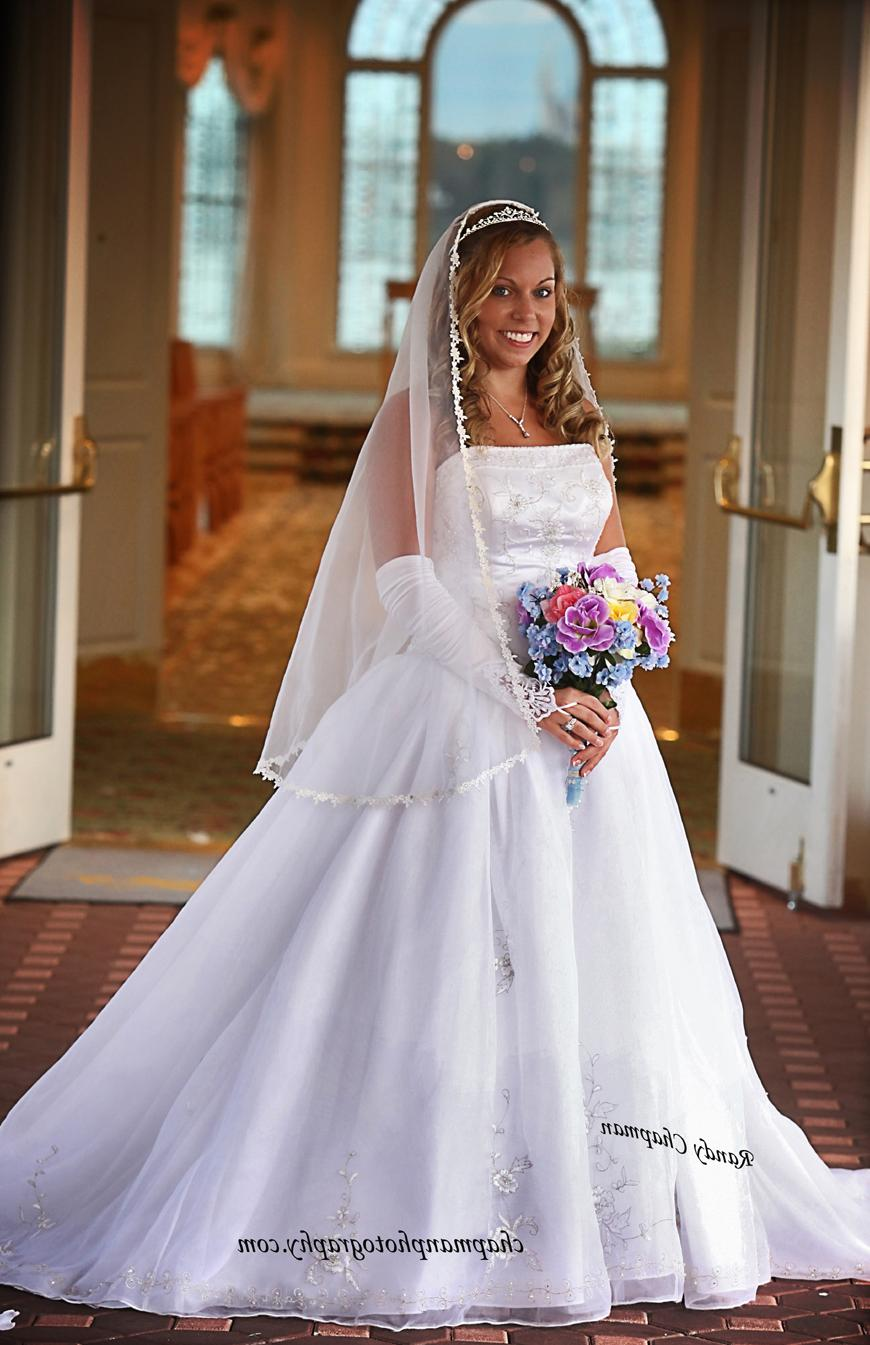Disney Bride Amy: Wedding