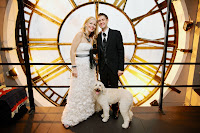 Wow beautiful Wedding day! Labradoodle Bindi big family day. Denver, CO.
