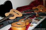 Guitarras del luthier belga, Daniel Bernaert