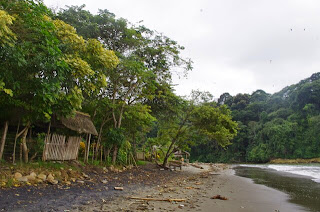 Estero de Plátano
