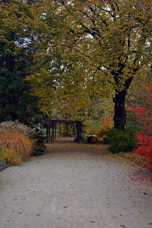 Zoo Heidelberg (09)