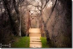 Walkpath Foot path Bridge St. Louis, MO