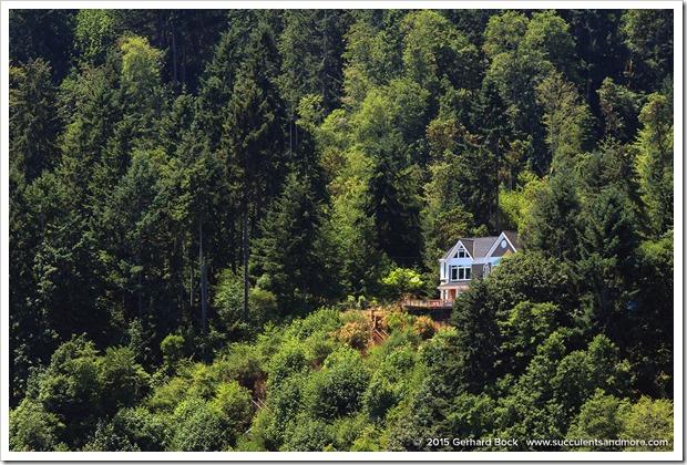 150704_Tacoma QuartermasterHarbor_0043