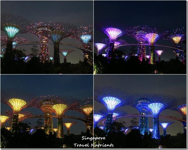 新加坡超級樹燈光秀 (46)