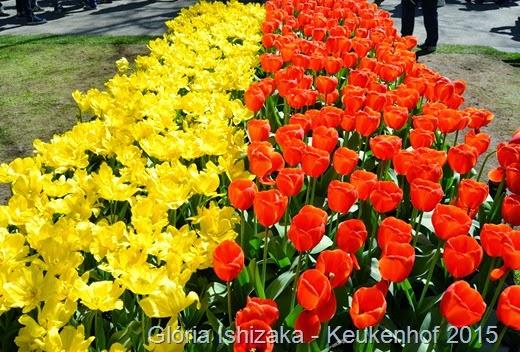 1 .Glória Ishizaka - Keukenhof 2015 - 10