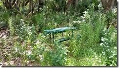 Hidden picnic table