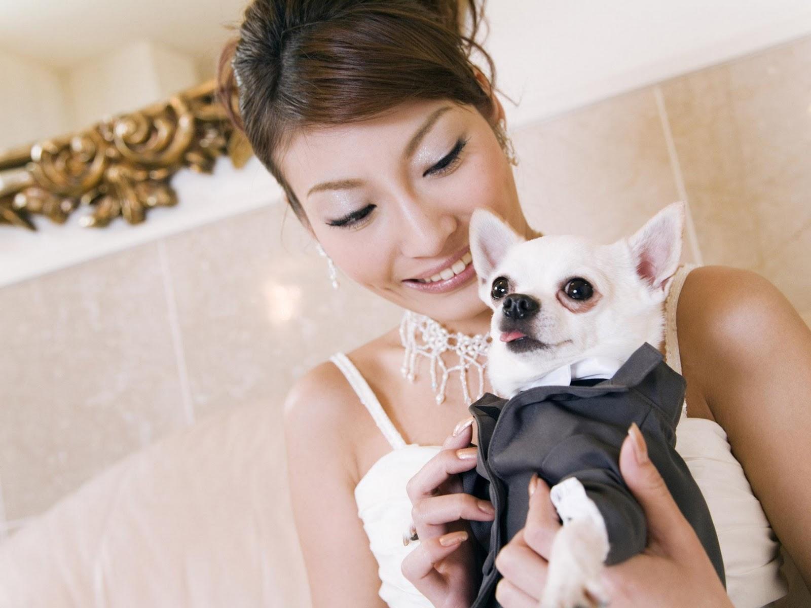 Wedding Photography : Wedding Decorations, Wedding Flower Arrangement,