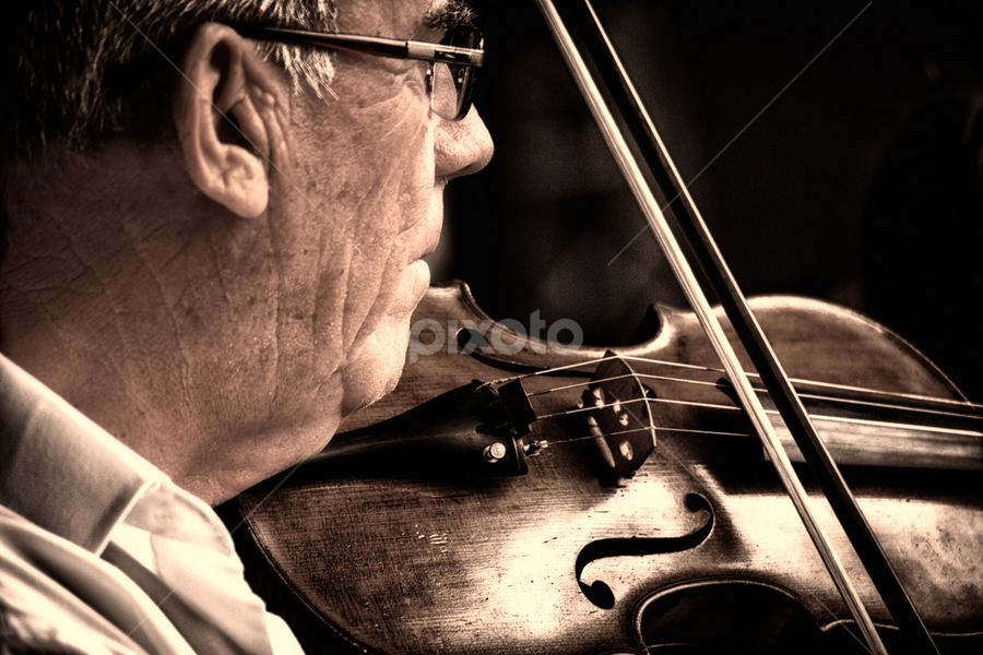 violin player by Linda Stander - People Musicians & Entertainers ( violin, man )