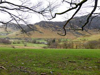 Across the fields to Causey Pike