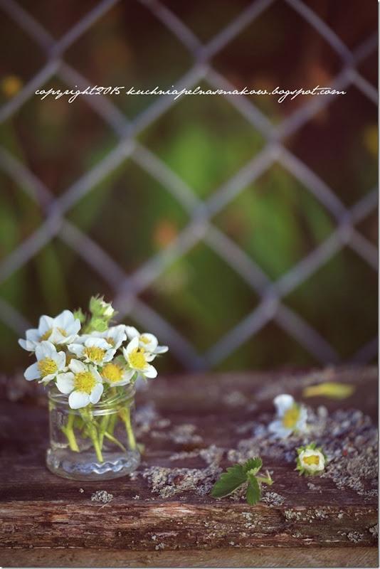 książka w ogrodzie (1)