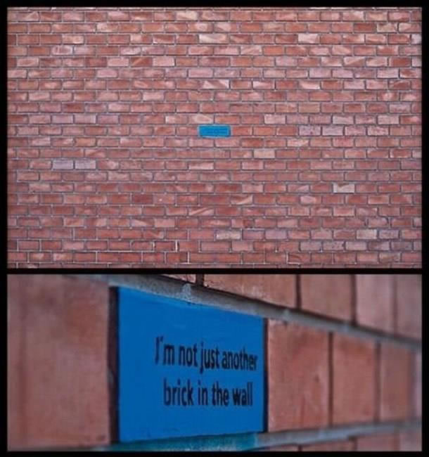 "A blue brick in a wall of red bricks saying ""I'm not just another brick in the wall"""