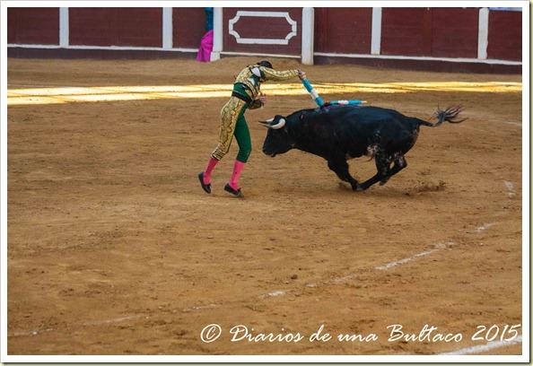 Toros Feria 2015-9867