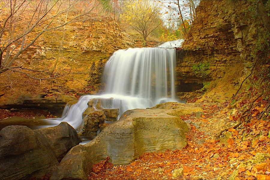 TANYARD FALLS by Dana Johnson - Landscapes Waterscapes ( waterscape, autumn, cascade, falls, landscape,  )