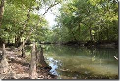 Chipola River view-1