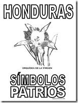 simbolos patrios honduras 3