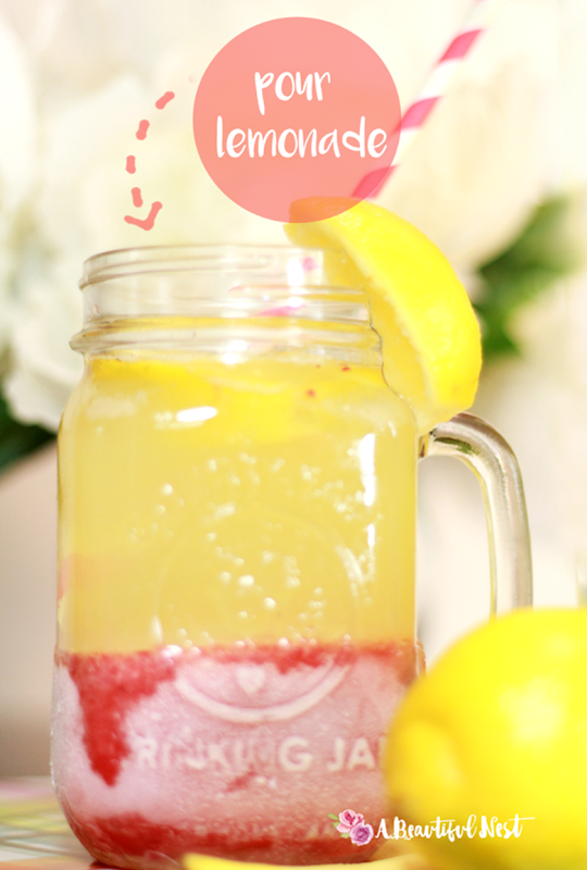 Strawberry-lemonade-Freeze-close-up-075
