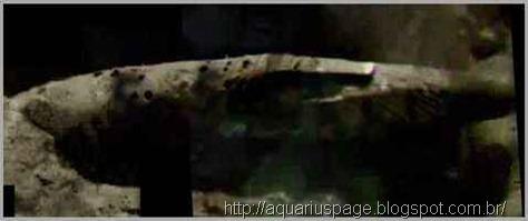 espaconave-alienigena-acidentada-lua