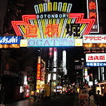 dotonbori in Osaka, Osaka, Japan