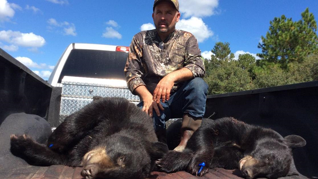 Florida bear hunt: Richard Sajko. 48, of Valrico poses with the bears he and his friend Jeff Nale. 61, of Port Charlotte shot on Saturday, 24 October 2015, on private land and brought to Rock Springs Run tagging station in Sorrento. The two men are longtime hunters. Photo: Susan Jacobson / Orlando Sentinel