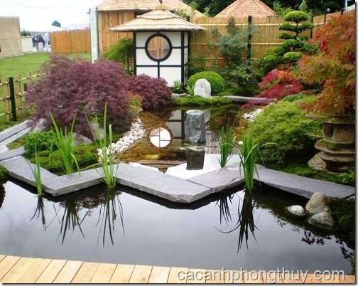 Hồ koi sân vườn hiện đại theo phong cách Nhật Bản