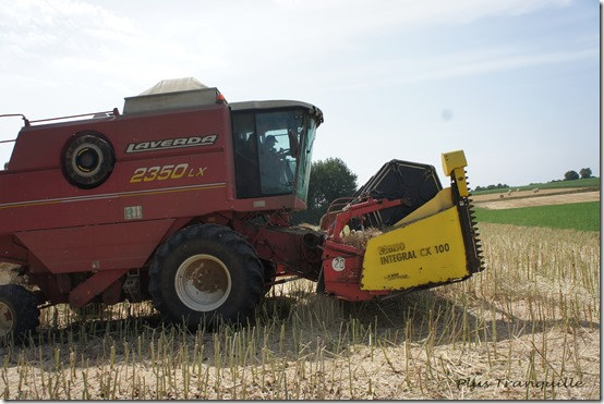 Harvest 9