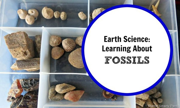 Earth-Science-Fossils