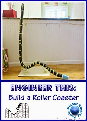 Design and Build a Roller Coaster