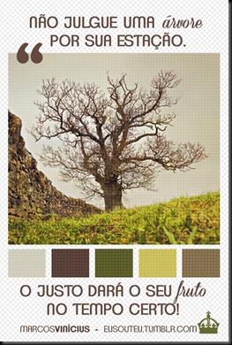 árvore2