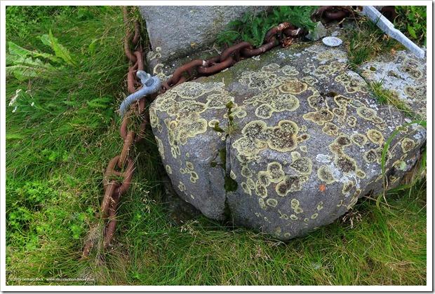 150910_Adak_rocks lichen1_WM