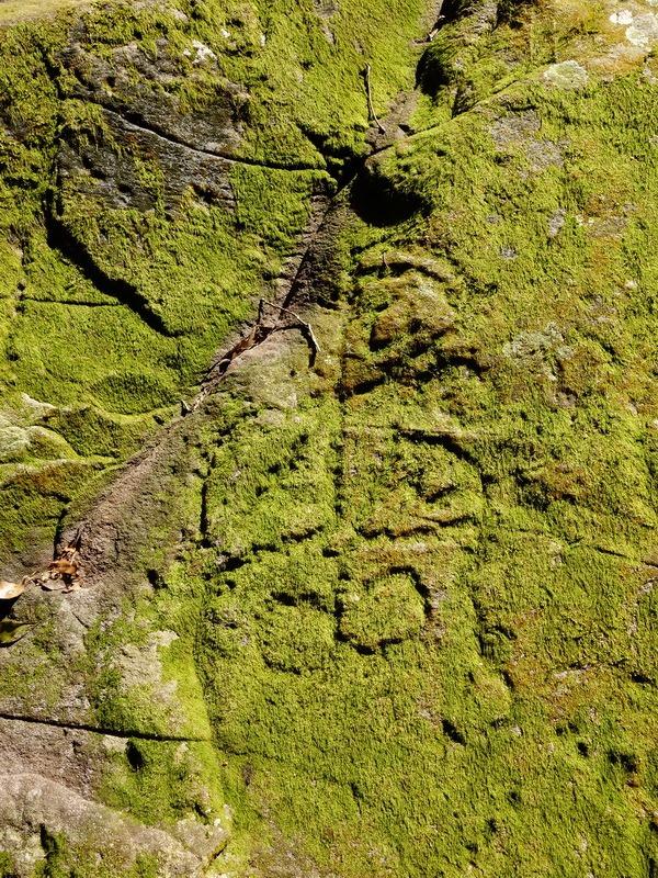 2014_0101-0105 萬山神石、萬山岩雕順訪萬頭蘭山_0760