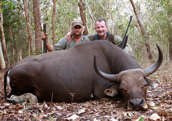 Water Buffalo Hunting Safaris