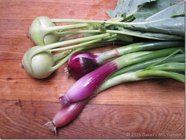 kohlrabi&onions