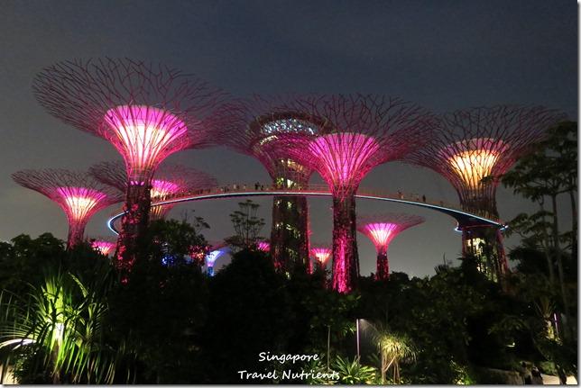 新加坡超級樹燈光秀 (36)