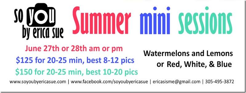 2015 Summer Mini Flyer 3 Info