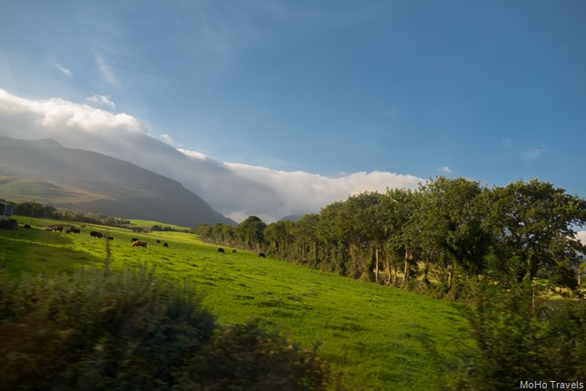 The Ring of Kerry (1 of 1)-6