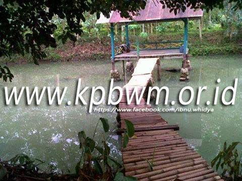 gazebo yang terletak di tengah kolam rawa bangun