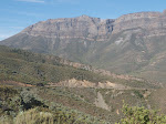 View from the top of a mountain pass, where we drove to see protea canary. The area is called Gydo.
