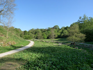 A wide section of Tideswell Dale