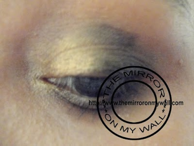 Smokey Gold Eye 5.jpg
