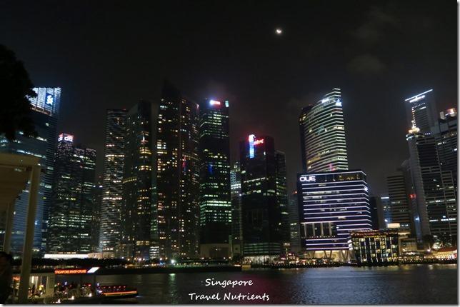 新加坡河岸 老巴剎 (2)