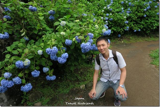 小田原城 (22)