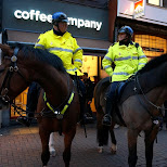 police on horses in Amsterdam, Noord Holland, Netherlands